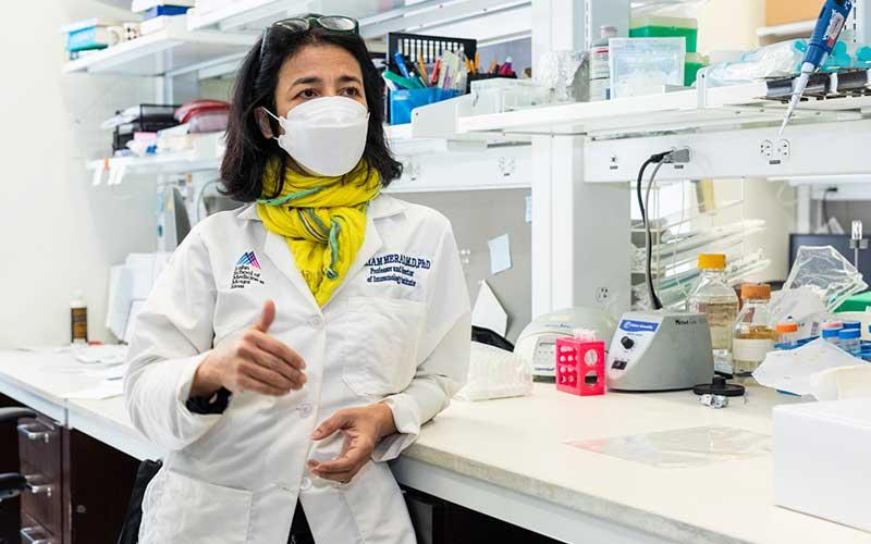 Miriam Merad, une algérienne à l'académie des sciences américaine
