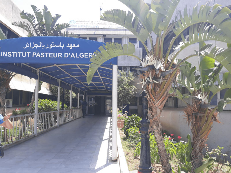 Covid-19 : l'Algérie va se doter bientôt de tests antigènes