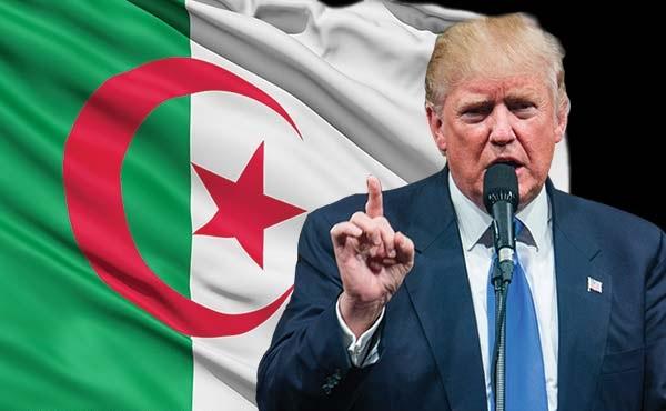 Ces Algériens à « la conscience renversée » nostalgiques de Donald Trump
