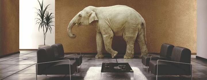 L'éléphant dans le salon (blog de Jaffar Lakhdari)