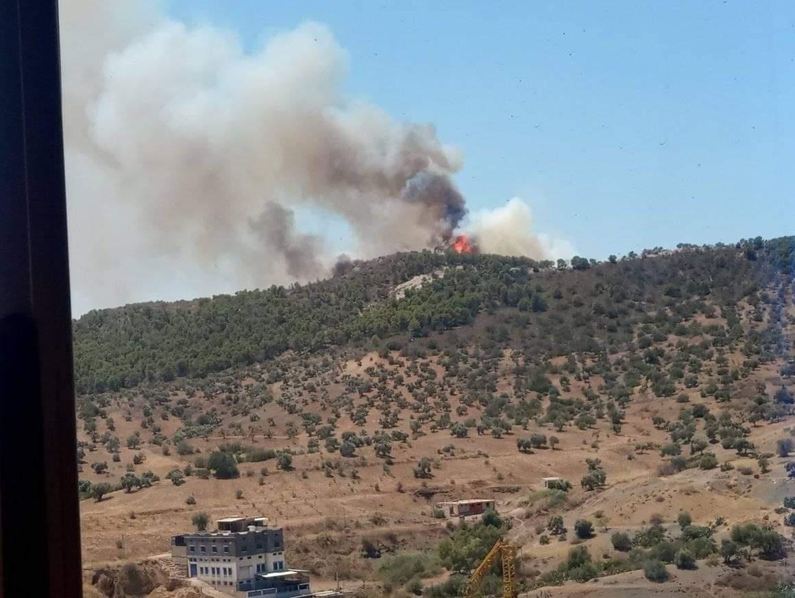 Les forêts Akchouche à Seddouk brûlent
