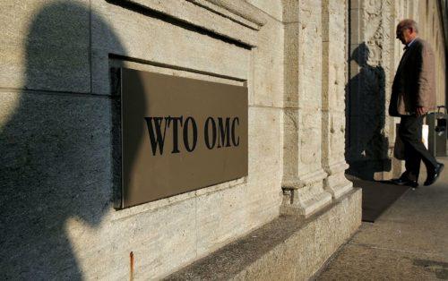 بعد الإنضمام للمنظمة العالمية للتجارة: بماذا «سنغزو» الأسواق العالمية